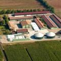 biogas_Calcinato